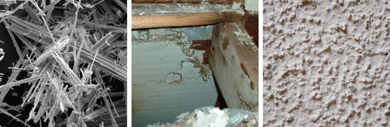 mold and asbestos